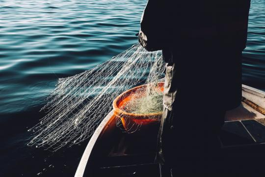 Person with fishing net in a boat on the water